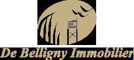 De Belligny Immobilier